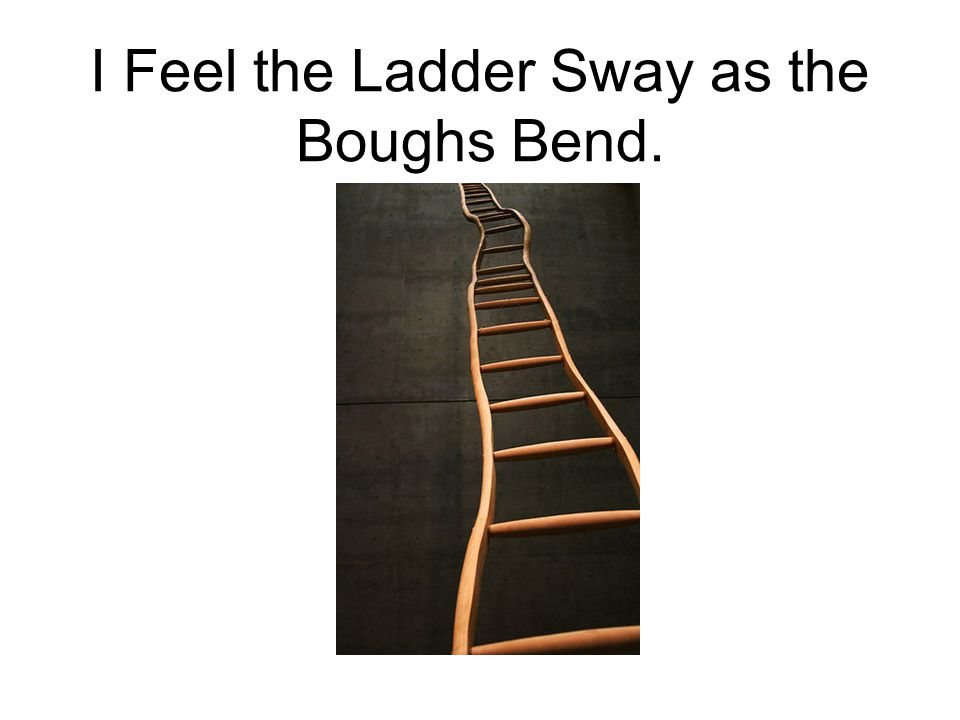 I Feel the Ladder Sway as the Boughs Bend.