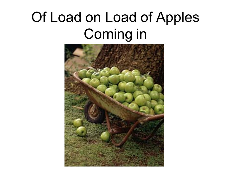 Of Load on Load of Apples Coming in