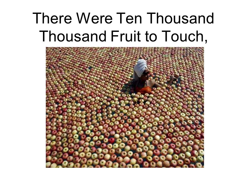 There Were Ten Thousand Thousand Fruit to Touch,