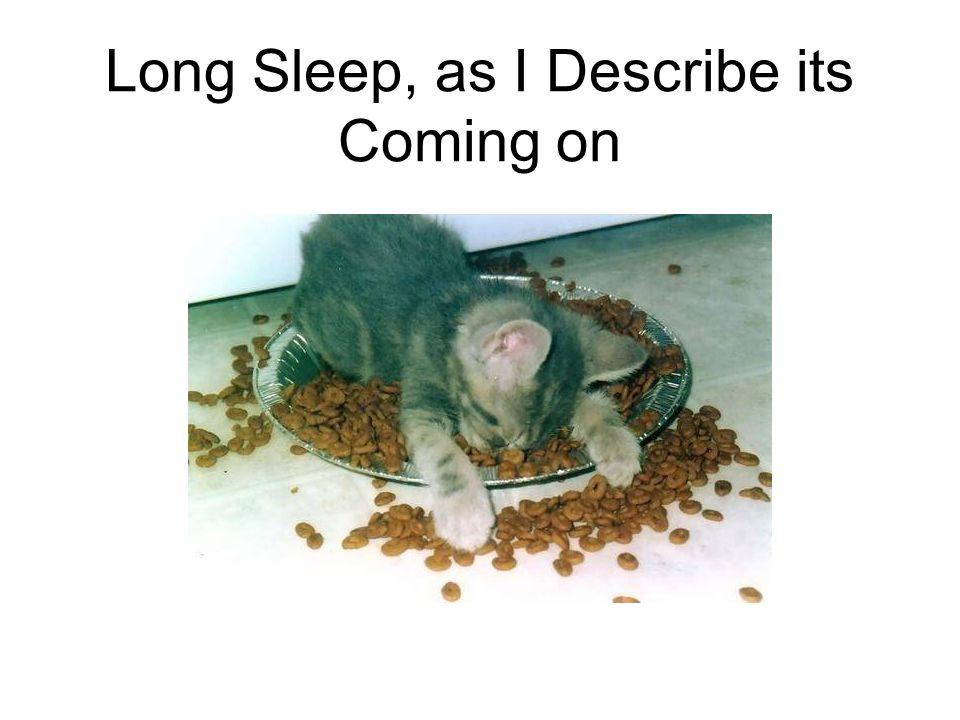 Long Sleep, as I Describe its Coming on