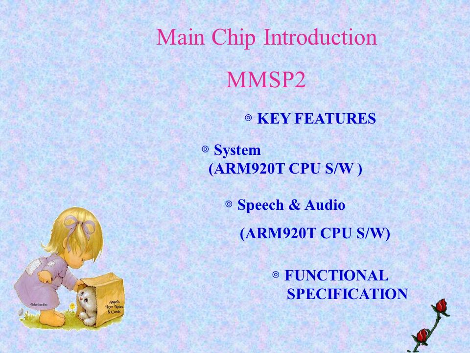 Main Chip Introduction