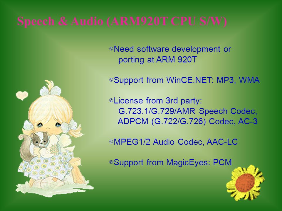 Speech & Audio (ARM920T CPU S/W)