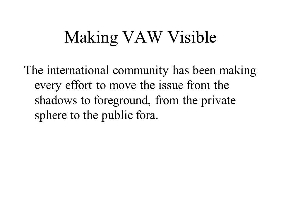 Making VAW Visible