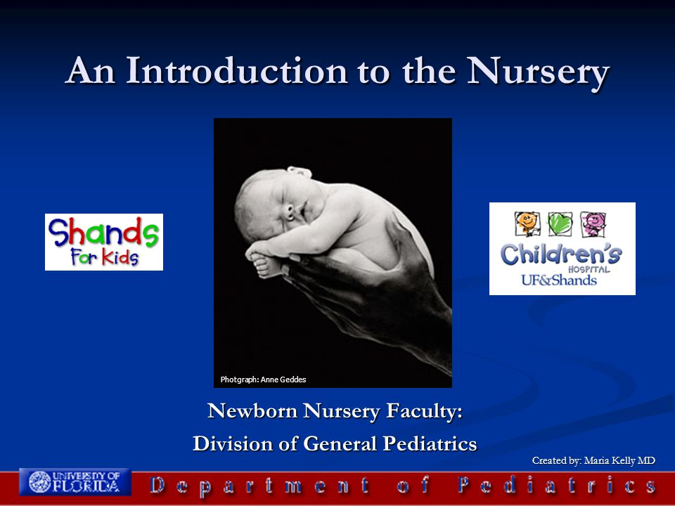 An Introduction to the Nursery