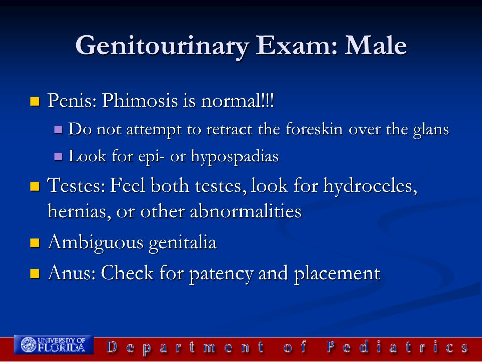 Genitourinary Exam: Male