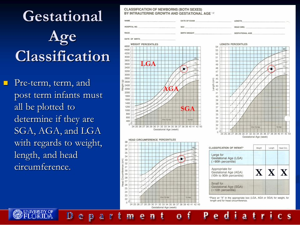 Gestational Age Classification