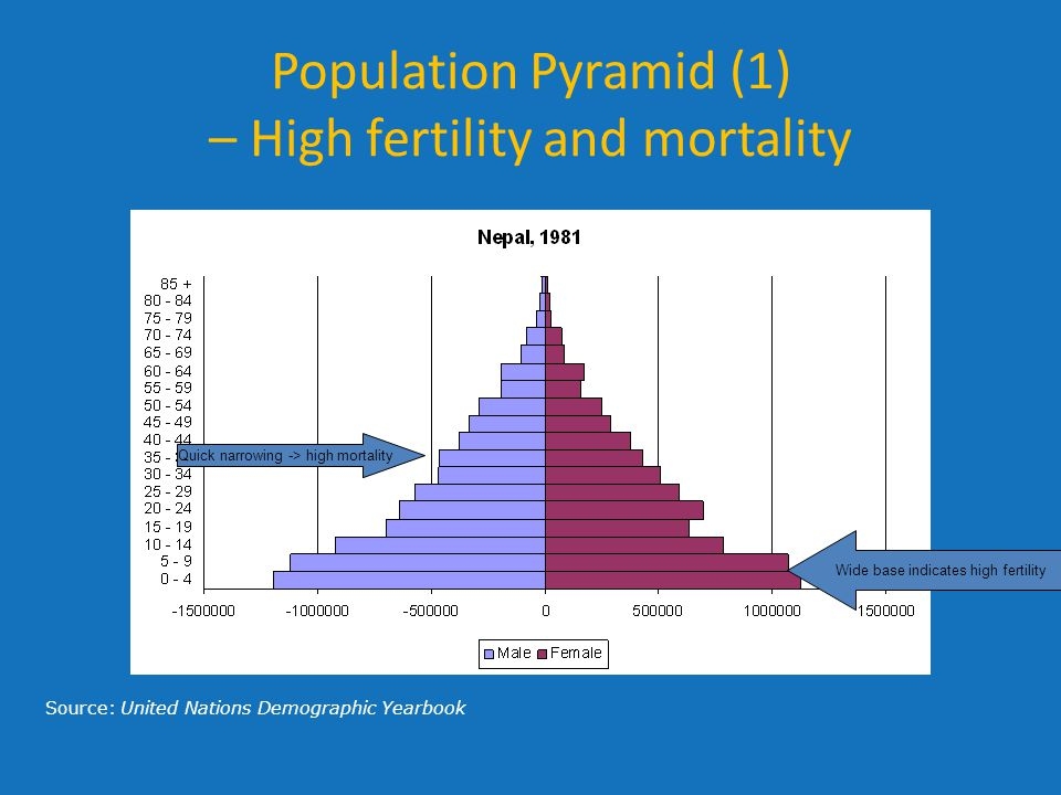 Population Pyramid (1) – High fertility and mortality