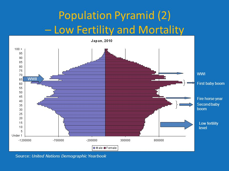Population Pyramid (2) – Low Fertility and Mortality