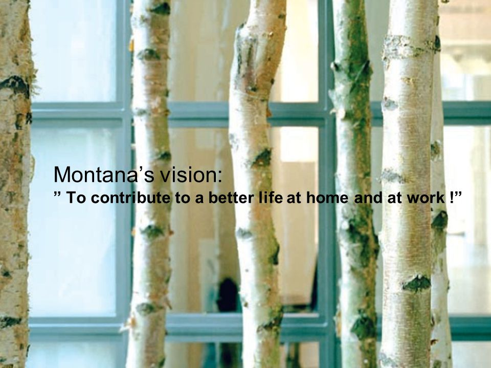 Montana's vision: To contribute to a better life at home and at work