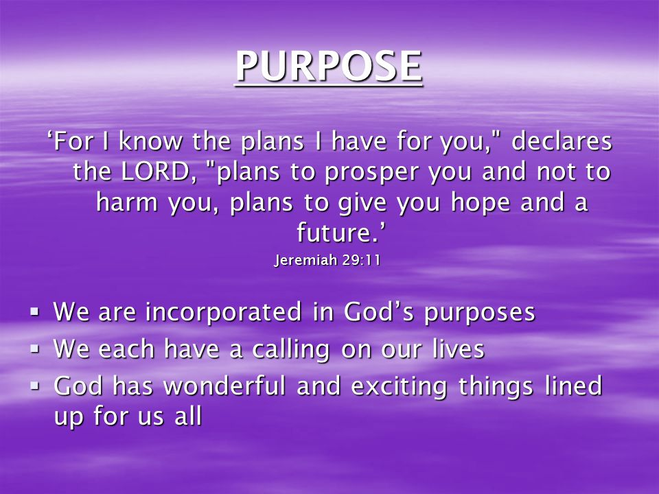 PURPOSE 'For I know the plans I have for you, declares the LORD, plans to prosper you and not to harm you, plans to give you hope and a future.'
