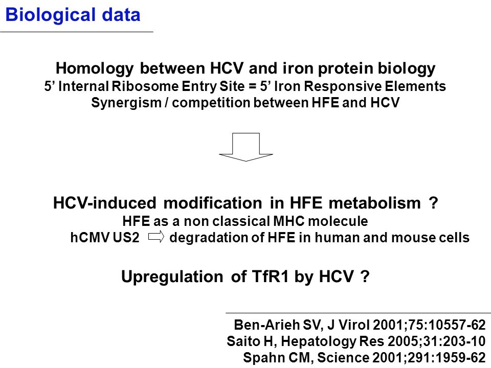 Biological data HCV-induced modification in HFE metabolism