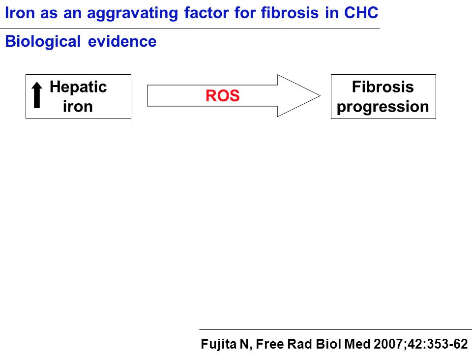 Hepatic iron ROS Fibrosis progression