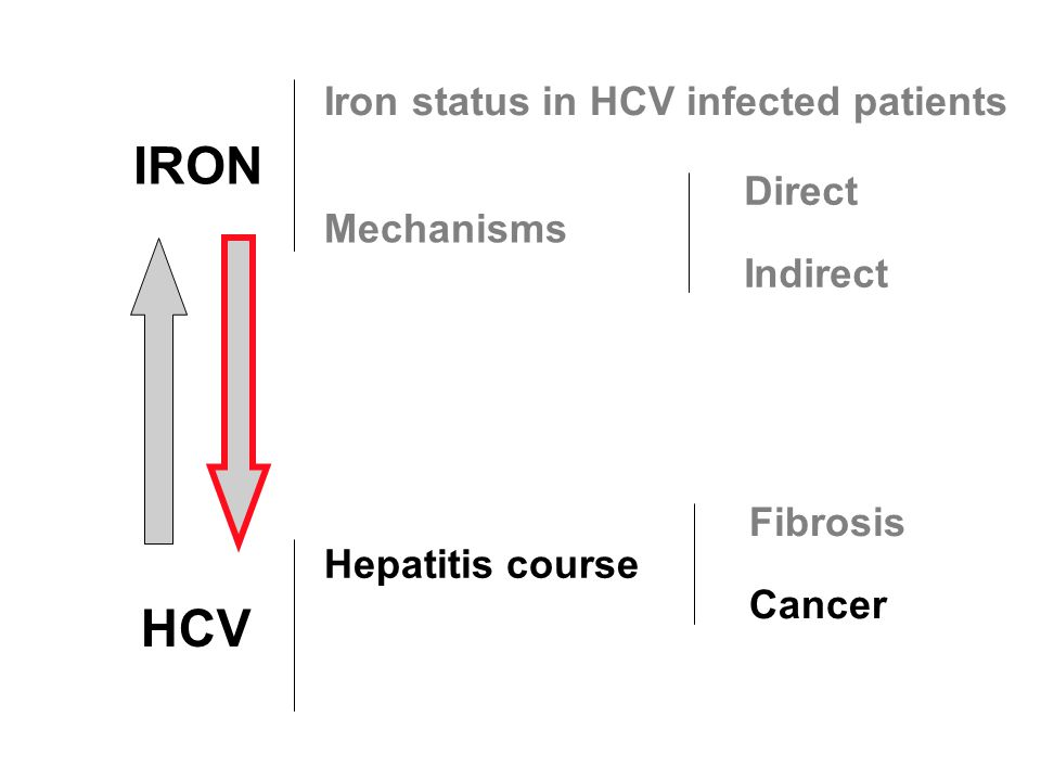 IRON HCV Iron status in HCV infected patients Direct Mechanisms