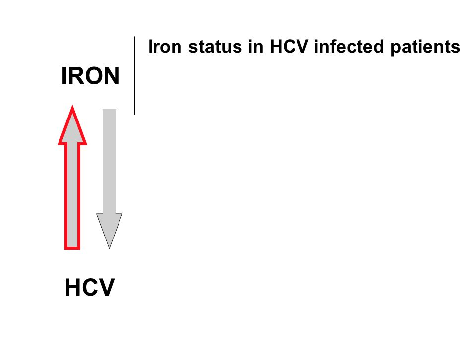 Iron status in HCV infected patients