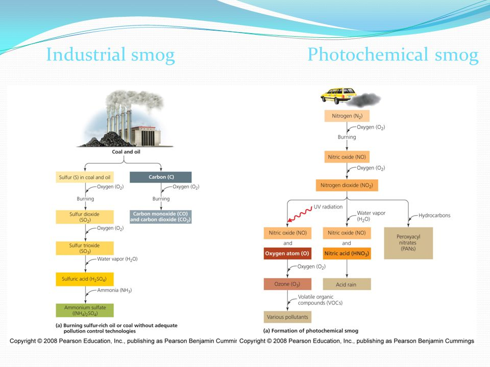 Industrial smog Photochemical smog 17.16
