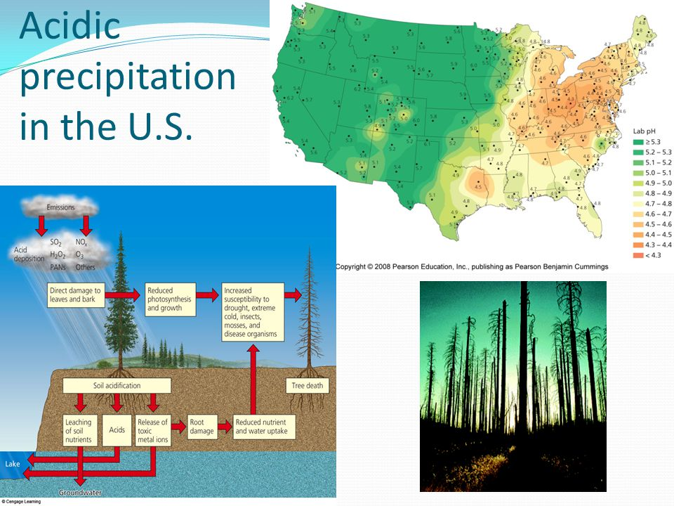 Acidic precipitation in the U.S.