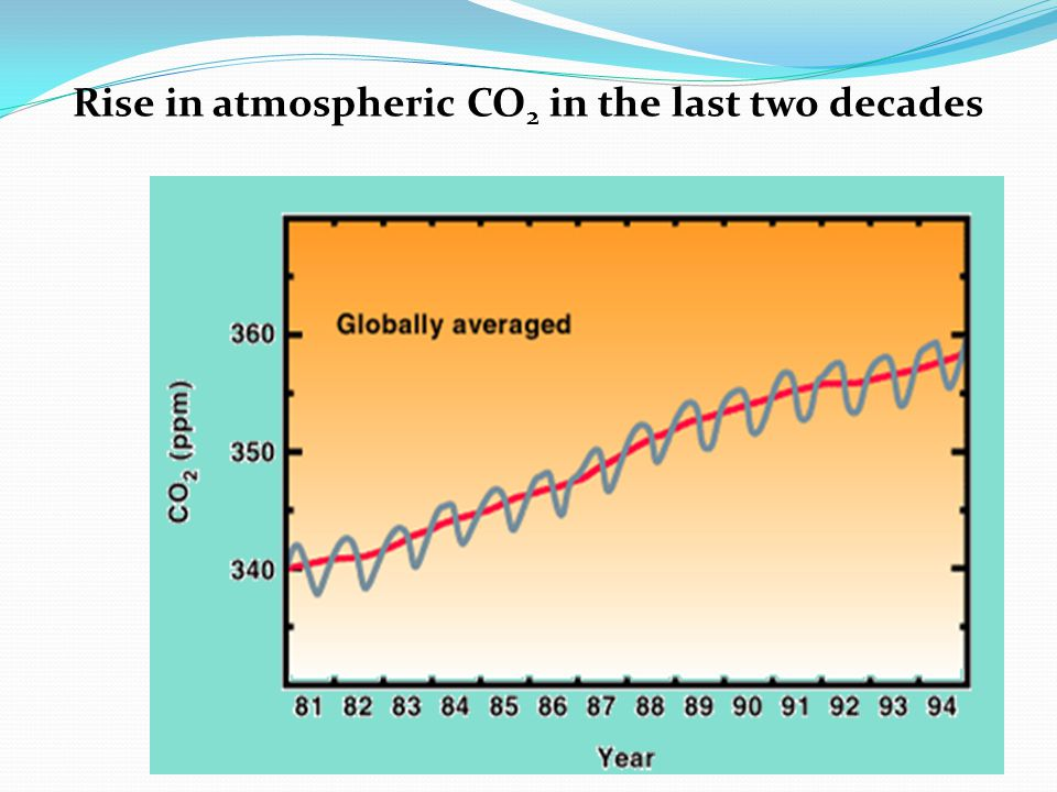 Rise in atmospheric CO2 in the last two decades