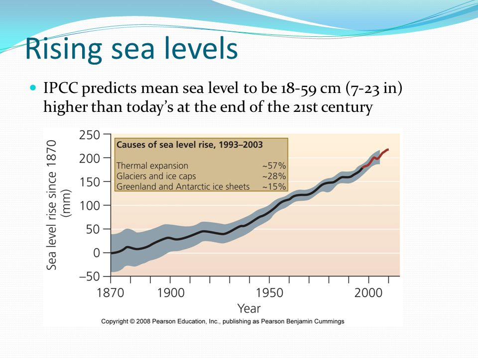 Rising sea levels IPCC predicts mean sea level to be 18-59 cm (7-23 in) higher than today's at the end of the 21st century.
