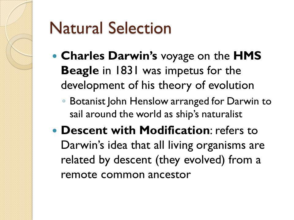 Natural Selection Charles Darwin's voyage on the HMS Beagle in 1831 was impetus for the development of his theory of evolution.