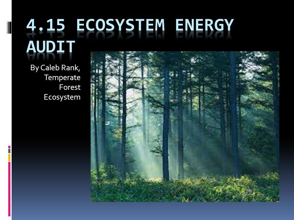 4.15 Ecosystem Energy Audit