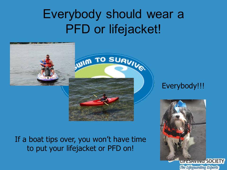 Everybody should wear a PFD or lifejacket!