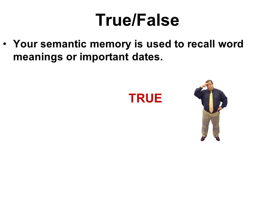 True/False Your semantic memory is used to recall word meanings or important dates. TRUE