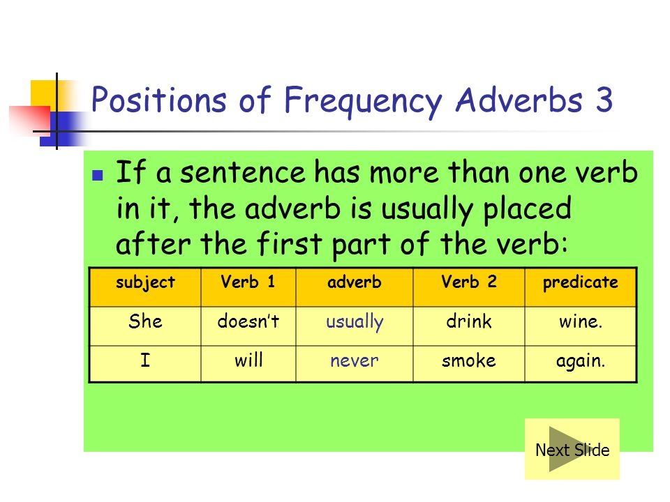 Positions of Frequency Adverbs 3