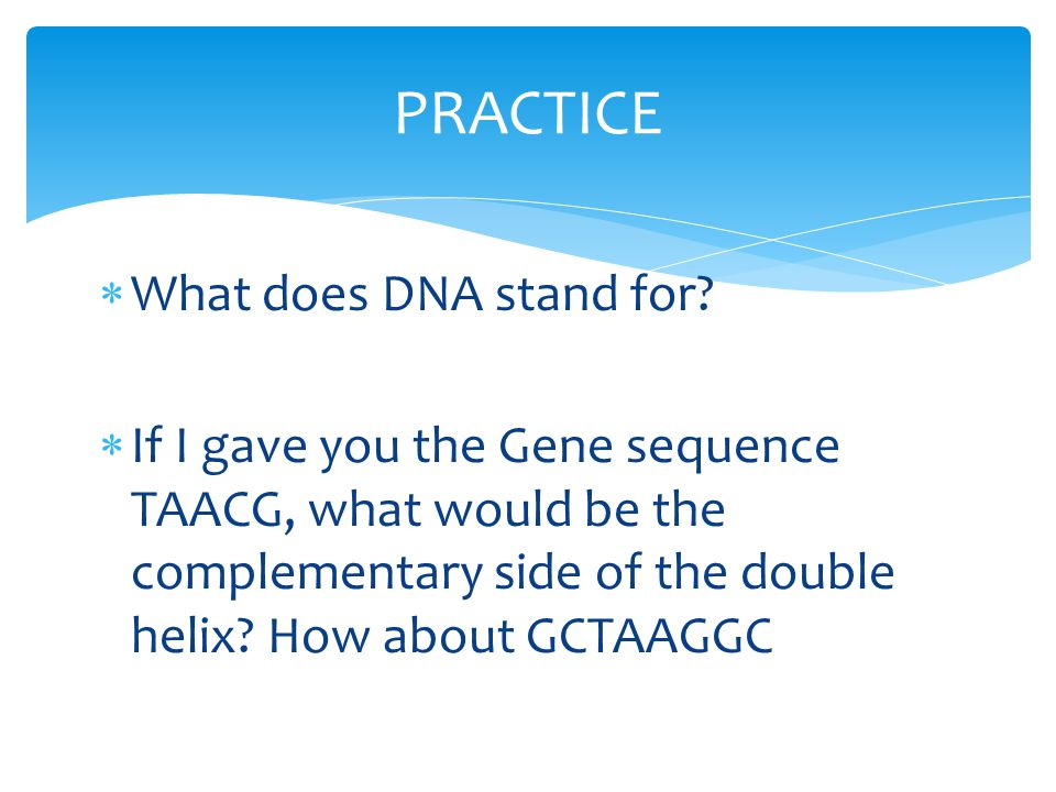 PRACTICE What does DNA stand for