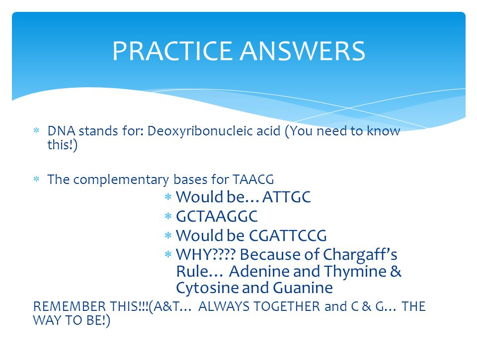 PRACTICE ANSWERS Would be…ATTGC GCTAAGGC Would be CGATTCCG