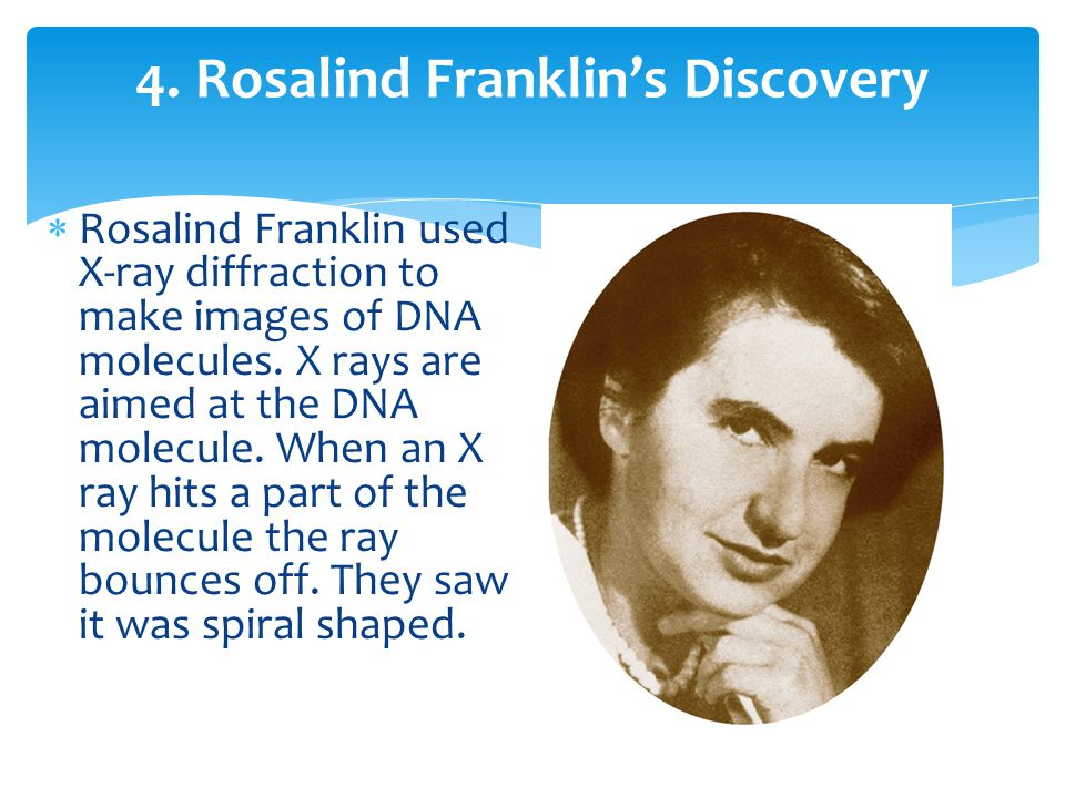 4. Rosalind Franklin's Discovery
