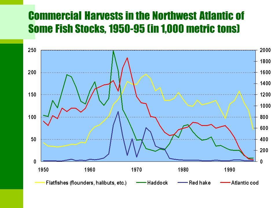 Commercial Harvests in the Northwest Atlantic of Some Fish Stocks, 1950-95 (in 1,000 metric tons)
