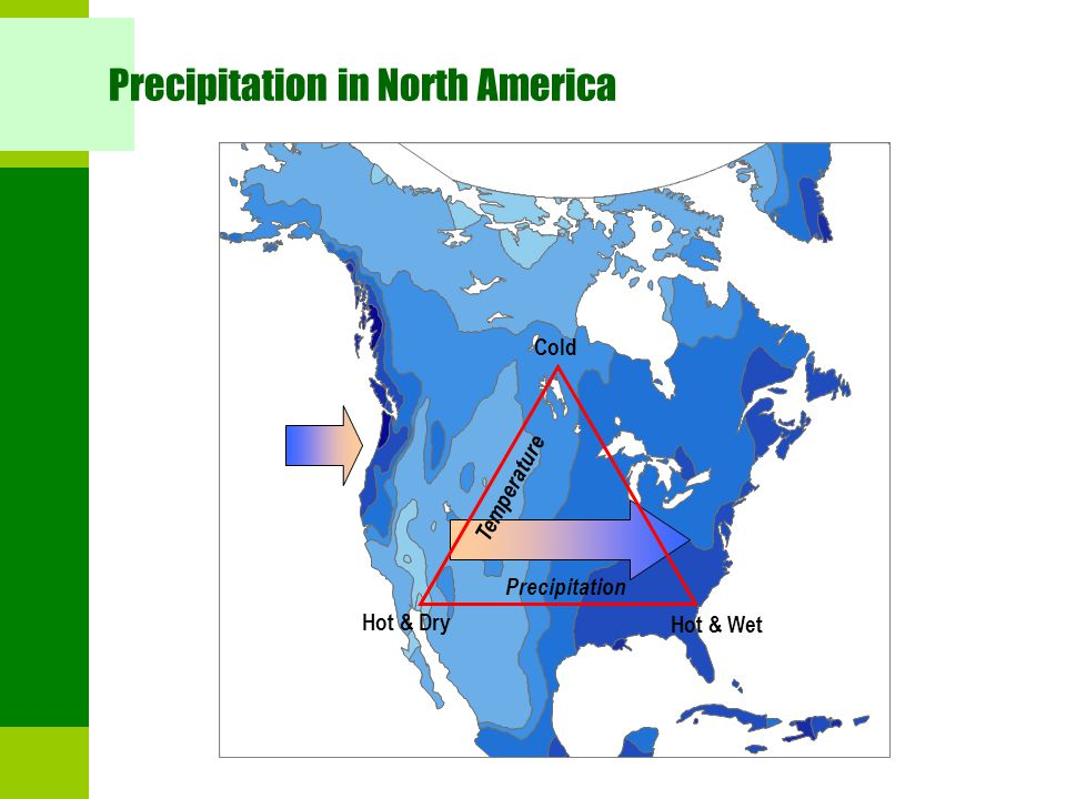 Precipitation in North America