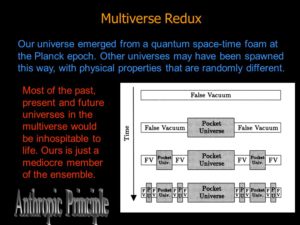 Anthropic Principle Multiverse Redux