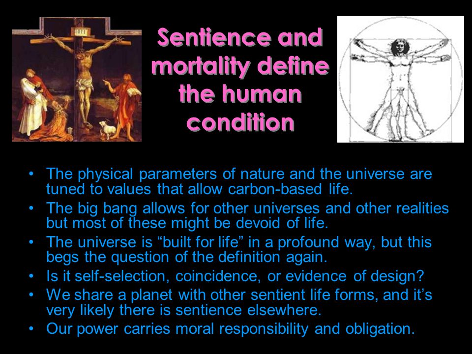 Sentience and mortality define the human condition