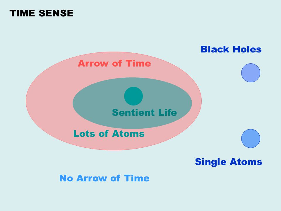 TIME SENSE Black Holes Arrow of Time Sentient Life Lots of Atoms Single Atoms No Arrow of Time