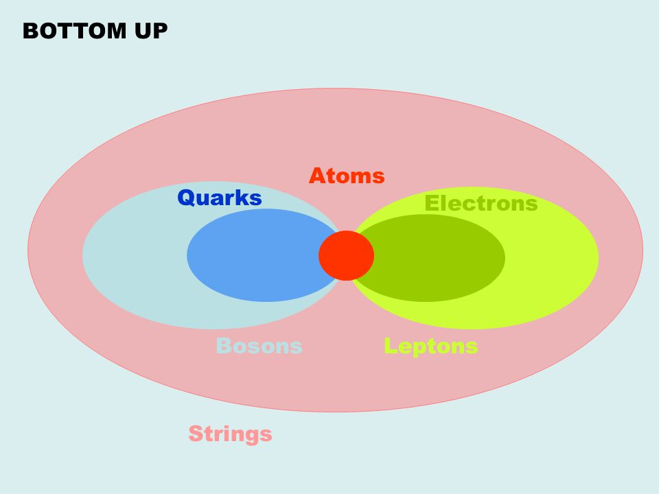 BOTTOM UP Atoms Quarks Electrons Bosons Leptons Strings