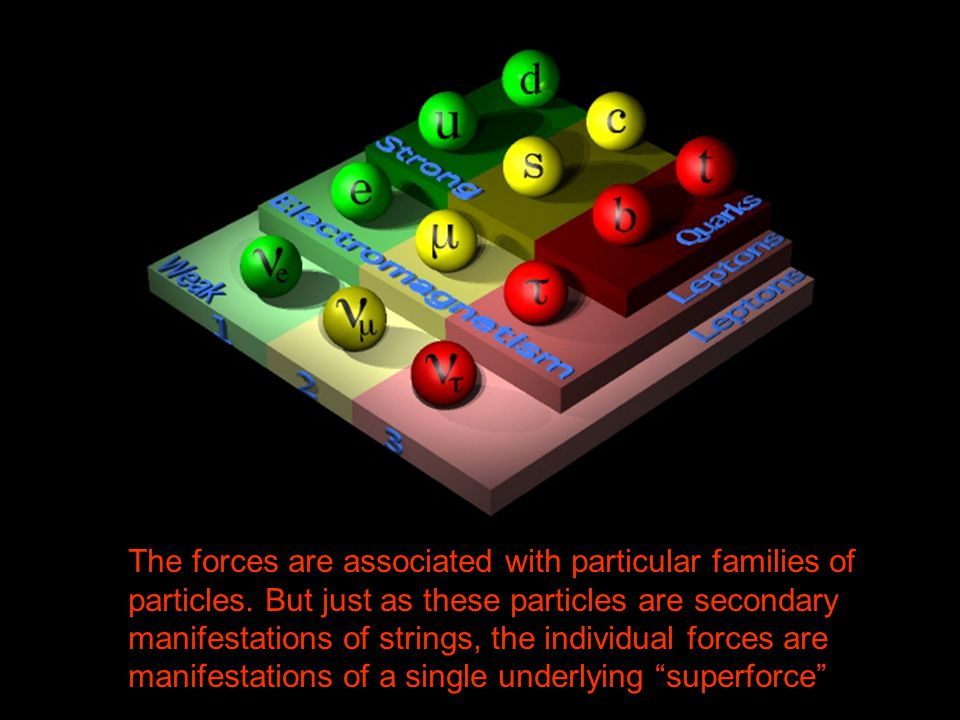 The forces are associated with particular families of particles
