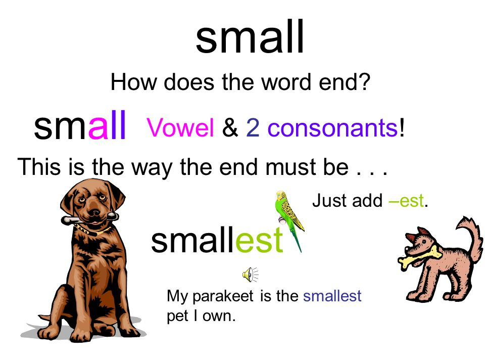 small small smallest Vowel & 2 consonants! How does the word end