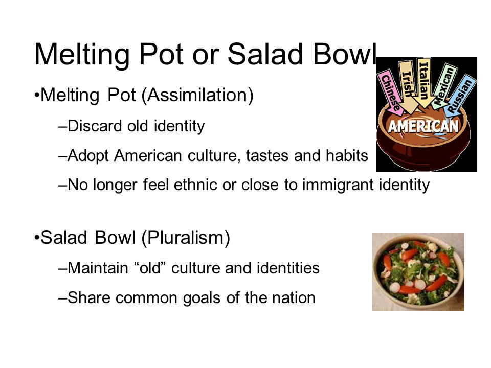 Melting Pot or Salad Bowl