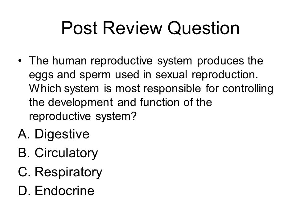 Post Review Question Digestive Circulatory Respiratory Endocrine