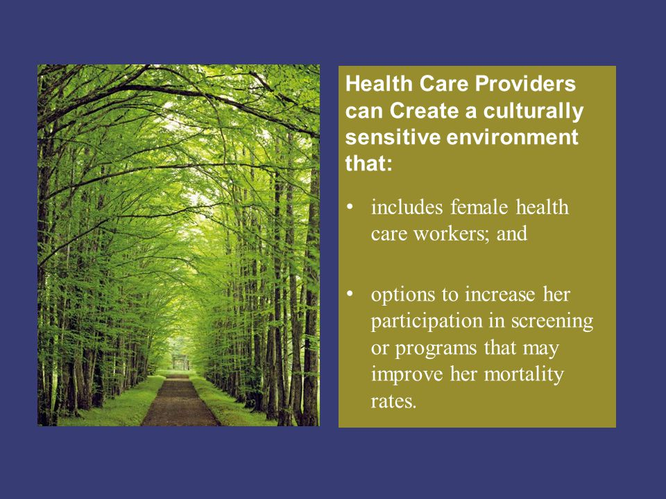 Health Care Providers can Create a culturally sensitive environment that: