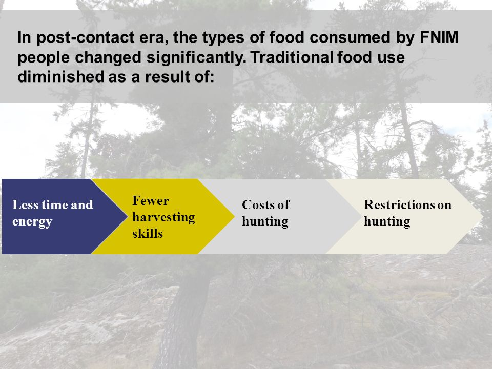 In post-contact era, the types of food consumed by FNIM people changed significantly. Traditional food use diminished as a result of: