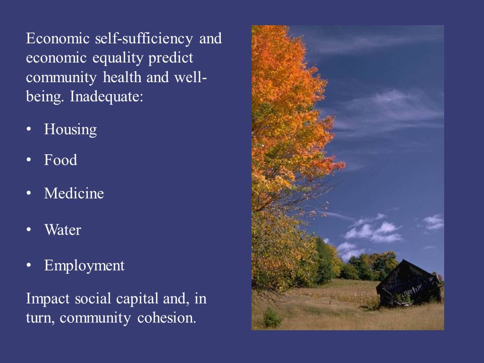 Economic self-sufficiency and economic equality predict community health and well- being. Inadequate: