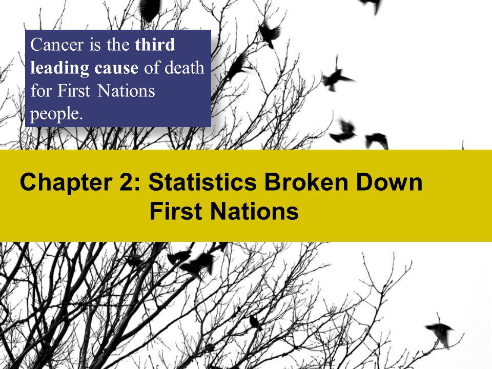 Chapter 2: Statistics Broken Down First Nations