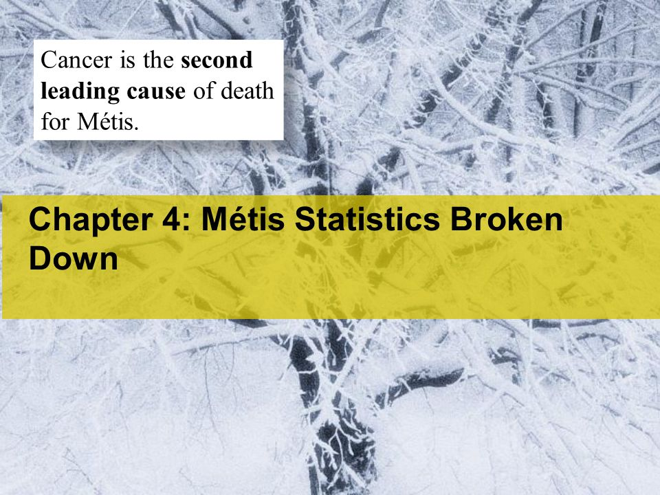 Chapter 4: Métis Statistics Broken Down