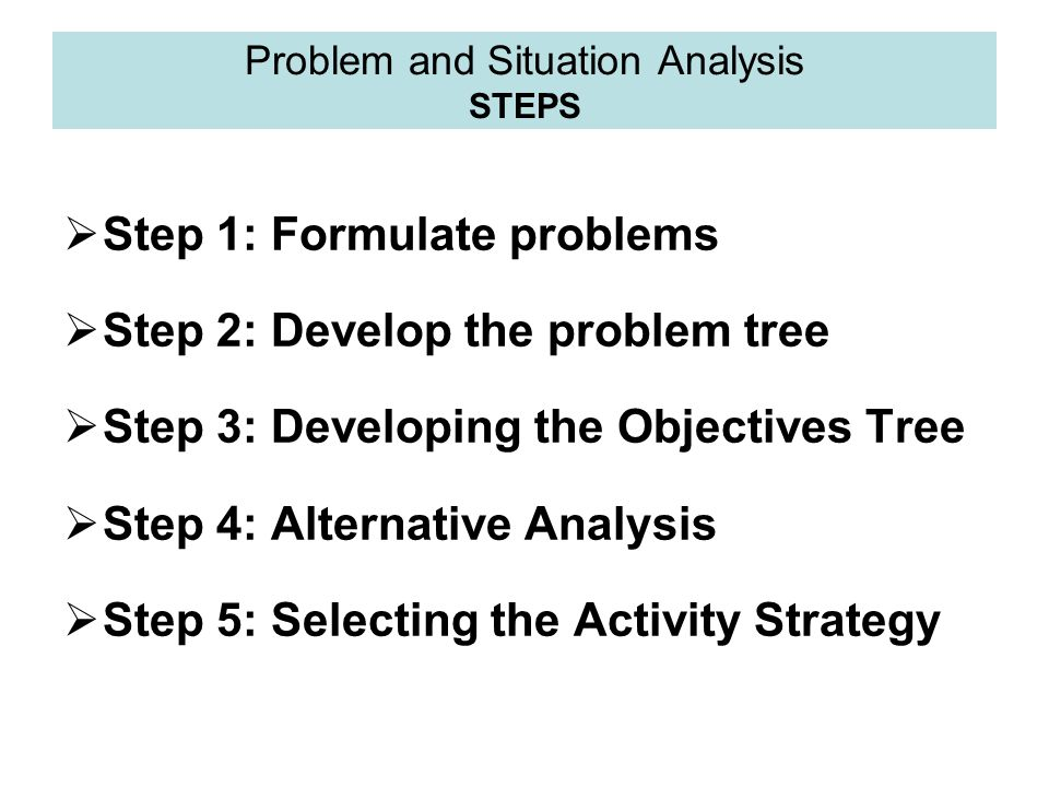 Problem and Situation Analysis STEPS