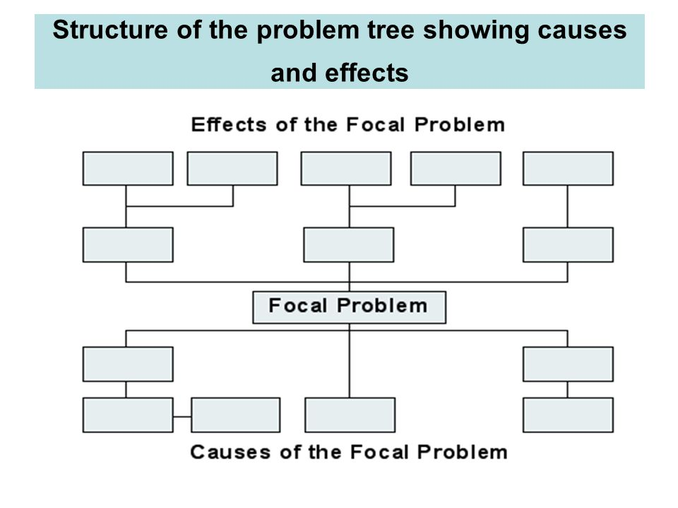 Structure of the problem tree showing causes and effects
