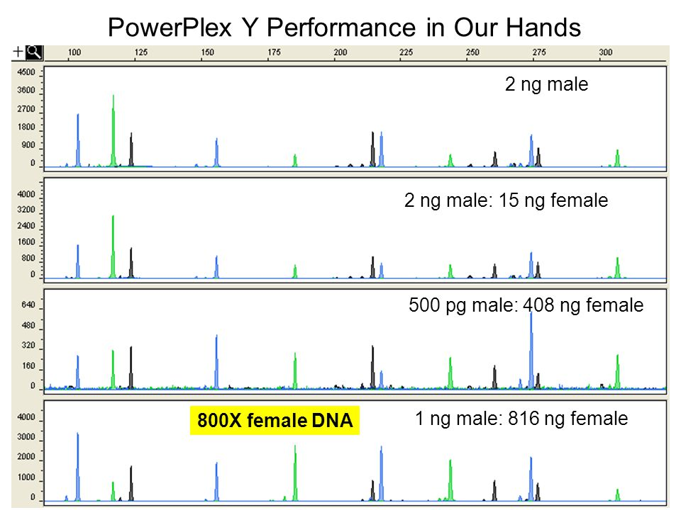 PowerPlex Y Performance in Our Hands
