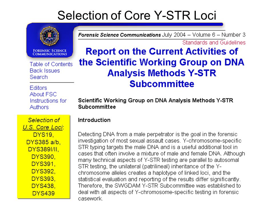 Selection of Core Y-STR Loci