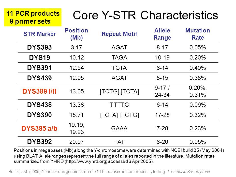 Core Y-STR Characteristics